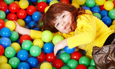 Family-Fun Package for 4 (up to a $50 value) - The Flying Frogs in Savannah