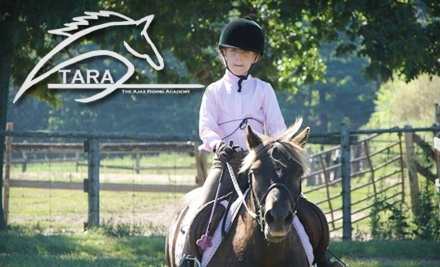 The Ajax Riding Academy: 30-Minute Private Riding Lesson  - The Ajax Riding Academy in Ajax