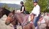 Rockin' L & D Ranch - Country Club: Rodeo Experience or Riding Lesson with Trail Ride at Rockin' L & D Ranch in Escondido (Up to 61% Off)