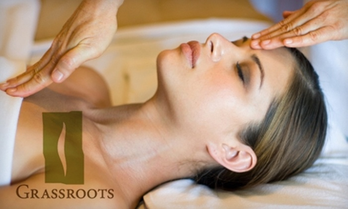 Grassroots Wellness Spa & Fitness Studio - Rockwoods: $40 for a Biofeedback Treatment at Grassroots Wellness Spa & Fitness Studio ($89 Value)
