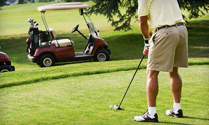 Coyote Run Golf Course - Flossmoor: 18-Hole Golf Outing for Two or Four with Credit Toward Meals at Coyote Run Golf Course in Flossmoor (Up to 52% Off)