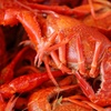 52% Off Cajun Cuisine at Prudhomme's Lost Cajun Kitchen in Columbia