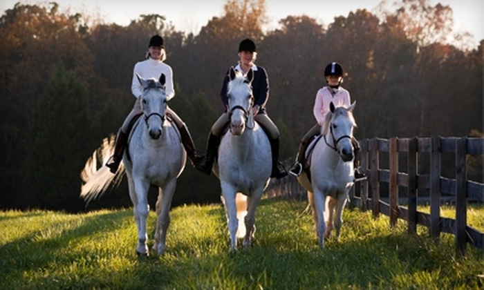 Taylor Turn Stable - Indianapolis: $55 for Two Private One-Hour Horseback-Riding Lessons at Taylor Turn Stable ($110 Value)