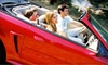 Exclusive Auto Spa - Briar Hill - Belgravia: Detailing for a Car, SUV, Wagon, or Minivan at Exclusive Auto Spa (Up to 70% Off)