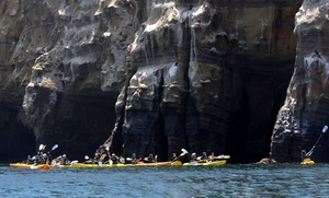Everyday California: 90-Minute Guided Sea-Cave Kayak Tour or Kayak and Snorkel Tour from Everyday California (Up to 64% Off)