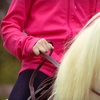 Up to 60% Off Horseback-Riding Lessons in DeWitt
