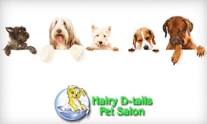 Hairy D-tails - Powers: $16 for Full-Service Pet Grooming at Hairy D-tails (Up to $85 Value)
