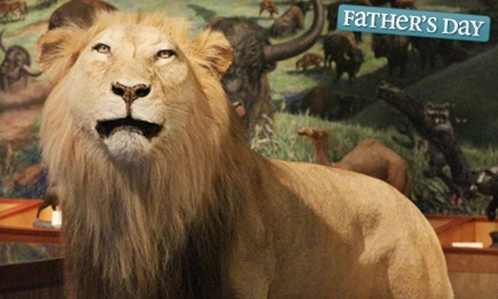 Brazos Valley Museum of Natural History - Bryan: $5 for Two General-Admission Tickets to the Brazos Valley Museum of Natural History in Bryan (Up to $10 Value)