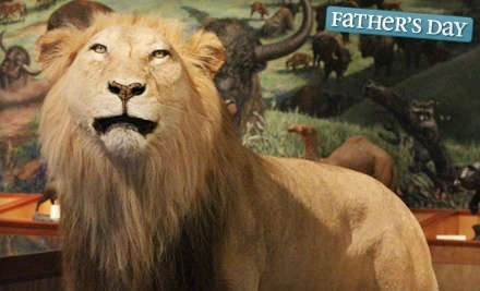 Brazos Valley Museum of Natural History - Brazos Valley Museum of Natural History in Bryan