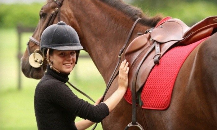 Del Lago Sporthorses - Prairie View-Waller: $20 for a One-Hour Private Horseback-Riding Lesson at Del Lago Sporthorses in Waller ($55 Value)