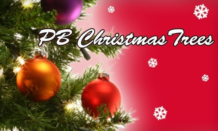 PB Christmas Trees - Beach Barber Tract: $24 for $50 Worth of Christmas Trees at PB Christmas Trees. Choose from Three Locations.