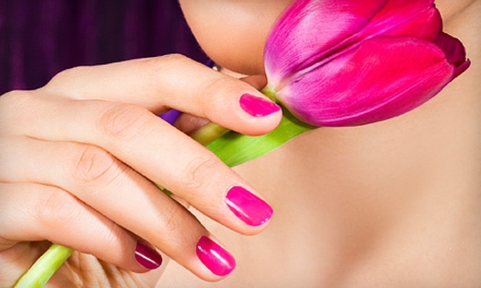 The Hampton Salon & Spa - Banyan Place: Mani-Pedi Services at The Hampton Salon & Spa in Grapevine (Up to 65% Off). Three Options Available.