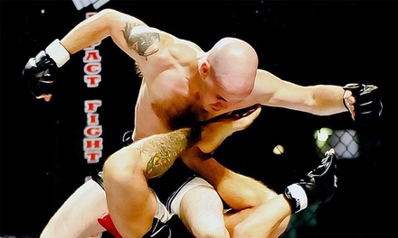 One G-Pass to MMA Fight Night at The Joe - IFL 61 at Joe Louis Arena on Saturday, March 14, at 7 p.m. (Up to 69% Off)
