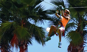 Zoom Air Adventure Park- Daytona Beach : Ziplining and Aerial Adventure Experience for Two or Four at Zoom Air Adventure Park (Up to 39% Off)