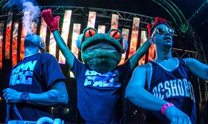 Damn Frog: Damn Frog at Señor Frogs on August 6 (Up to 55% Off)