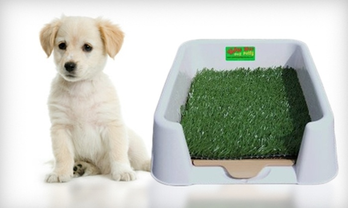 Good Dog Products - Downtown North: $49 for a Pee Wee Indoor Dog Potty from Good Dog Products ($99 Value)