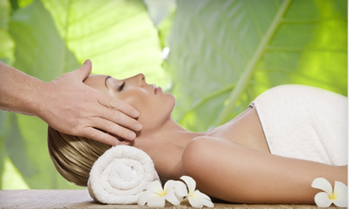 Aprile Chiropractic Center - Land O' Lakes: $29 for a One-Hour Massage at Aprile Chiropractic Center in Lutz ($70 Value)