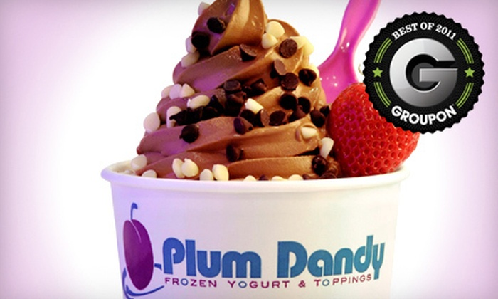 Plum Dandy - Saratoga Springs: $6 for $12 Worth of Frozen Yogurt at Plum Dandy in Saratoga Springs