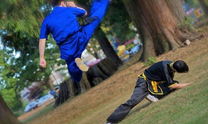 Grand Master Xiao Martial Arts & Sports Fitness Club - Marpole: Wushu or Kung Fu Classes at Grand Master Xiao Martial Arts & Sports Fitness Club (Up to 55% Off)