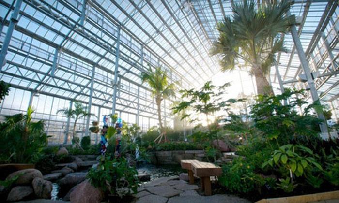 Nicholas Conservatory & Gardens - Sinnissippi Park: Nicholas Conservatory & Gardens Visit for Two or Four (Up to Half Off)