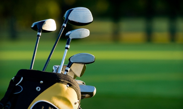 David Ayres' Lowcountry Custom Golf - Mount Pleasant: Golf Club or Putter Fitting at David Ayres' Lowcountry Custom Golf in Mount Pleasant (Up to 60% Off)