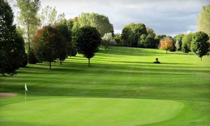 Arkona Fairways Golf Course - Arkona: $60 for Golf for Two, Cart Rental, Two Buckets of Range Balls, and Two Meals at Arkona Fairways Golf Course (Up to $120 Value)
