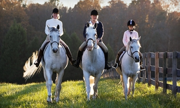 MRC Stables - Kirtland: $17 for a One-Hour Horseback-Riding Lesson at MRC Stables in Kirtland ($35 Value)