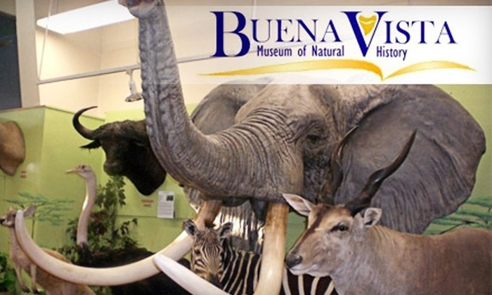 Buena Vista Museum of Natural History - Downtown Bakersfield: $7 for Two General-Admission Tickets to the Buena Vista Museum of Natural History ($14 Value)