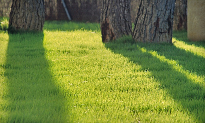 Thunder Lawn Care - Yukon: Lawn-Mowing Service with Option of Weed Treatment from Thunder Lawn Care (Up to 56% Off)