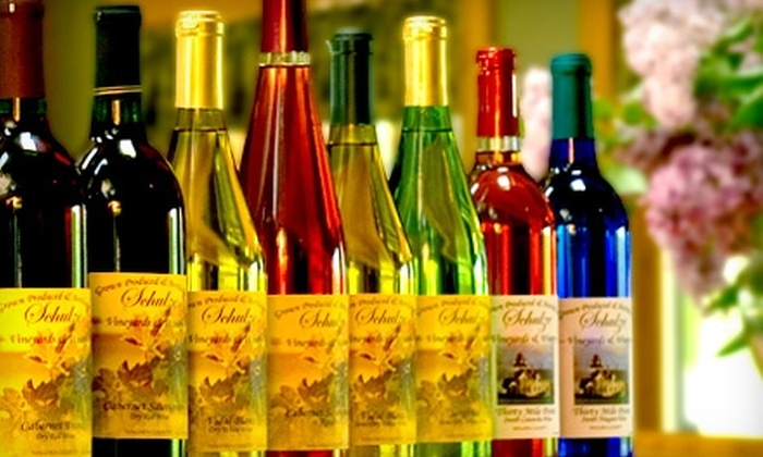 Schulze Vineyards & Winery - Newfane: $25 for $50 Worth of Wine and Wine Accessories at Schulze Vineyards & Winery