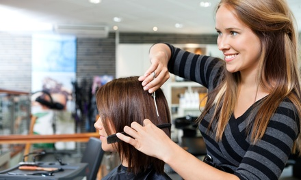 Haircut and Style with Option for Base or Full Color or Partial or Full Highlights at Salon @ 31 (Up to 50% Off)