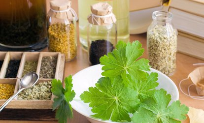 image for One or Two Herbal Demo Classes at Erin's Meadow Herb Farm (Up to 62% Off)