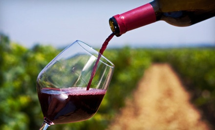 Summer Wine Tour for One (a $123 value) - Niagara Fun Tours in Niagara Falls