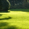 59% Off Lawn Care from Spring Man Canada