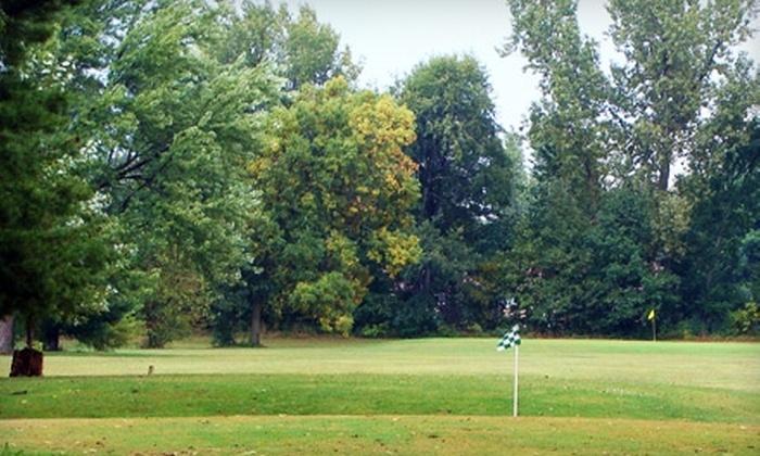 Summergreen Golf Course - Hudsonville: $19 for Four Rounds of Nine-Hole Golf at Summergreen Golf Course in Hudsonville (Up to $40 Value)