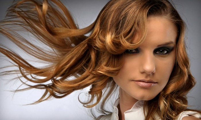 Blo Salon - Utica: Haircut and Choice of Deep Conditioning and Style, Color, or Highlights at Blo Salon in Shelby Township