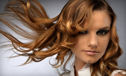1 Haircut, Deep Conditioning Treatment, and Style (a $50 value) - Blo Salon in Shelby Township