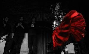 Espectáculo de flamenco para dos con 2 bebidas de X-V o S por 24,90 € en Essential Flamenco Madrid