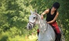 Patch Wood Farm - Sandown: One or Two Group Horseback-Riding Classes, or Two Private Riding Lessons at Patch Wood Farm (Up to 51% Off)