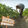 Half Off Organic Produce Delivery