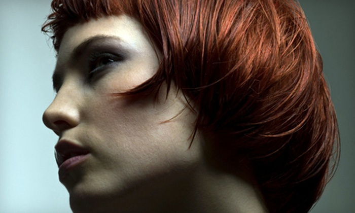Darrell Barrett Salon - Lutherville - Timonium: Haircuts, Color, and Keratin Treatments at Darrell Barrett Salon in Timonium (Up to 67% Off). Four Options Available.