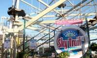 High Ropes Experience for Two or Four at Planters Garden Centre (43% Off)