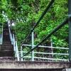 $5 for South Side Slopes' StepTrek 2011 Admission