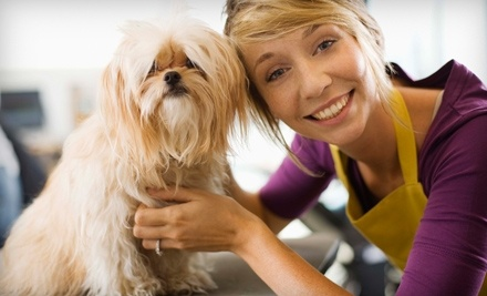 $60 Groupon to Animal Care Unlimited - Animal Care Unlimited in Columbus