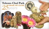 57% Off at Tohono Chul Park