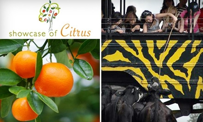 Showcase of Citrus - Citrus Ridge: Half Off Tickets to the Monster Truck Eco-Tour from Showcase of Citrus. Choose From Two Ticketing Options.