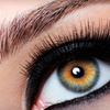 Half Off Eyelash Extensions at Elfie's Lash & Nails