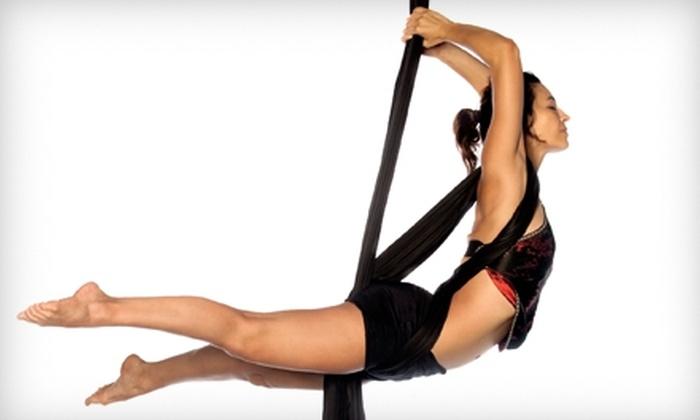 The Fitness Loft - Manhasset: $39 for Three Aerial Fitness Classes at The Fitness Loft in Manhasset ($135 Value)