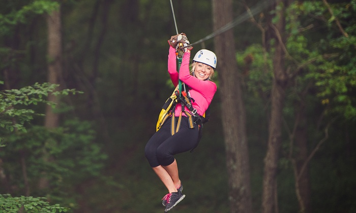Empower Adventure Middleburg at Salamander Resort & Spa - Middleburg: Empower Adventure Middleburg Tree Top Zip Tour with Optional Rappeling (Up to 42% Off)