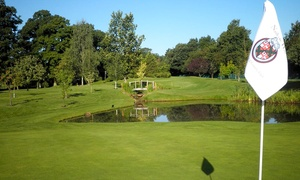David Playdon Golf at Nailcote Hall: Two 60-Minute PGA Golf Lessons With Swing Analysis from £25 with David Playdon Golf at Nailcote Hall